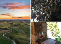 Creative Writing in Tuscany with Alison MacLeod
